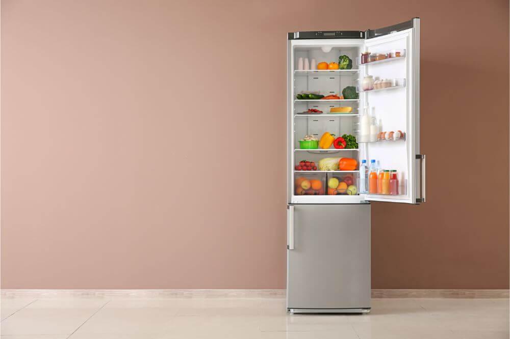 double door fridge